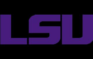 LSU icon